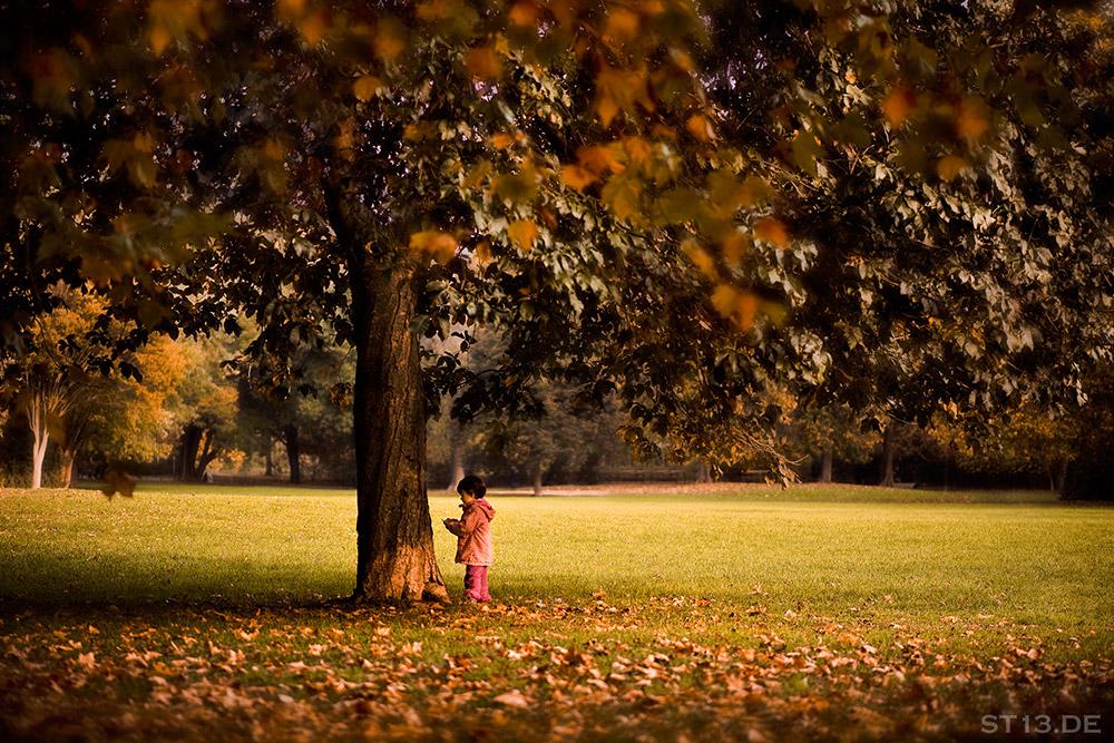 Kind im Herbst unter Baum