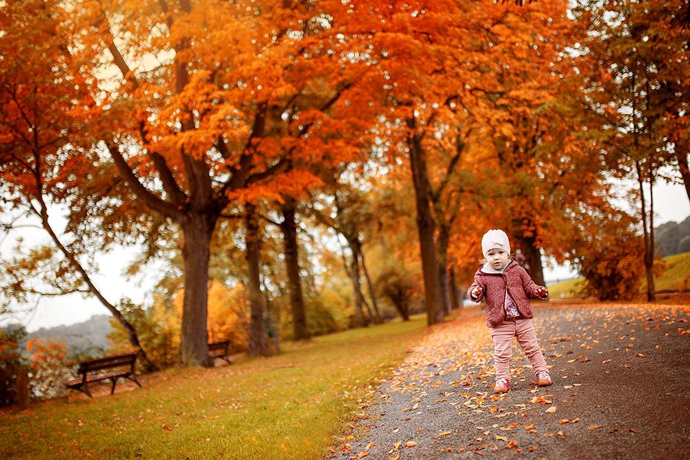 Kind und Herbstallee